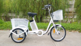 Cargo 3 Wheel E - Bike Lithium Battery Electric Tricycle Electiric Three Wheel LED Display for Sale