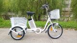 Visualización de LED eléctrica de la rueda de Electiric tres del triciclo de la batería de litio de la E-Bici de la rueda del cargo 3 para la venta