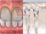 Denti di sapore della menta del contrassegno privato che imbiancano la polvere d'illuminazione del dente della polvere