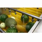 Máquina de lavar rolo de escova de frutas, Máquina de limpeza de lavagem de vegetais