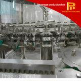 Máquina de rellenar de botellas del fabricante del cristal de la botella de la bebida plástica automática del jugo