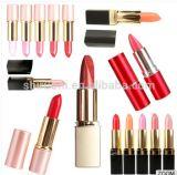 Qualitäts-unterschiedliche Farbe stellen Ihren eigenen Marken-Lech-Lippenstift her