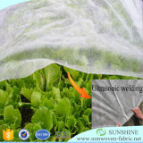Tissu non tissé à résistance UV pour l'agriculture