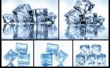 Générateur de glace de cube 51kg/24h avec des certificats de Ce/ETL