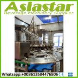 Машинное оборудование завалки минеральной вода автоматической бутылки любимчика чисто