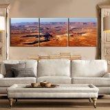 De eenvoudige Goederen van het Huis ontwerpen de Decoratieve Olieverfschilderijen van het Canvas