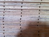 Madera contrachapada Grooved del pino