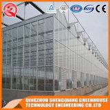 Multi-Überspannung rostfreier Stahl-Aluminiumprofil-Polycarbonat-Blatt-Gewächshaus