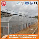 Multi-Überspannung Stahlrahmen-Aluminiumprofil-Plastikgewächshaus
