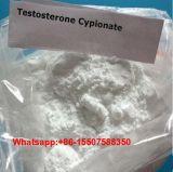 Testoterone Cypionate di elevata purezza per Bodybuilding