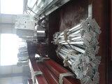 Paletto d'acciaio saldato di H (QDWF-003)