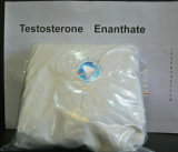 99% Reinheit-rohes Steroid Puder-Testosteron Enanthate
