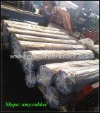 Лист Gw3017 косточки рыб Великой Китайской Стены резиновый резиновый