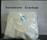 Consegna steroide superiore della cassaforte di Enanthate del testoterone della polvere