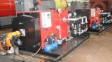 300kw de automatische Diesel van de Buis van de Brand Boiler van het Hete Water