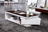 Tavolino da salotto moderno rotativo di Funtional (CJ-116)