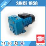 DP-Serie, die Wasser-Pumpe bewirtschaftet