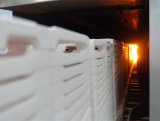 Fornace a temperatura elevata di spinta per Debinding di ceramica