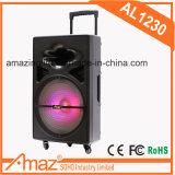 Altavoz vendedor superior de los multimedia en 12 pulgadas con la luz del LED