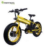Bici eléctrica del motor de gran alcance con las defensas