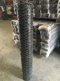 Плетение провода PVC Coated шестиугольное с (CE и SGS)