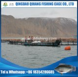 Vida de serviço 15 do HDPE dos peixes da gaiola anos de cultivo de Floaiting