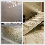台所カウンタートップのためのカシミールの新しい白かAndromedaの白い花こう岩の平板