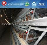 Jaula de batería de la capa del pollo para la granja