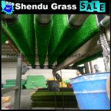 Трава 100% PP девственницы материальная декоративная искусственная 10mm