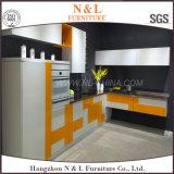 N&L dirigem o gabinete de cozinha ao ar livre do aço inoxidável da mobília da mobília