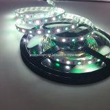 Tira de RGBW LED para el cuarto de baño