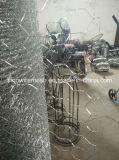 Rede de fio galvanizada coelho dos salões de Sailin