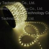 Lumière ronde de corde du horizonal DEL de fils de la lumière IP68 2 de fontaine de piscine
