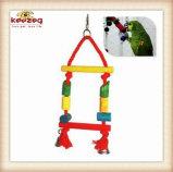 Les jouets en bois environnementaux d'animal familier/oiseau joue (KBR001)
