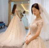 2017의 새로운 도착 중앙 소매 무도회복 임신 결혼 예복 (꿈 100029)