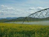 Kreis-Bewässerungssystem