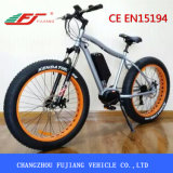 성인을%s 48V 750W 전기 뚱뚱한 자전거