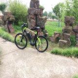bici elettrica movente della montagna di 36V 250W METÀ DI