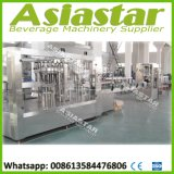 32-32-10 planta de empacotamento líquida quente da máquina de engarrafamento do suco