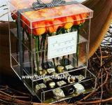Caixa impermeável acrílica por atacado da flor fresca