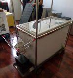258L 12V 또는 24V DC 압축기 태양 상업적인 냉장고