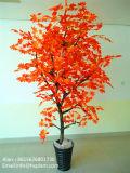 الصين إمداد تموين زخرفة شجر قيقب اصطناعيّة جافّة [بونسي] شجرة