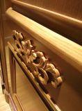 Porte en bois de type de Moyen-Orient avec le découpage