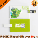 Nombre del regalo Outstanding Company/palillo de la tarjeta de crédito del USB (YT-3101)