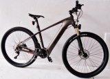 Bicicleta eléctrica Europa para la bicicleta de la fibra E del carbón