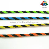 高品質10mmのマルチカラー警告様式のナイロン/ポリエステル/PP編みこみのロープ/コード