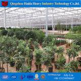 容易にVenloの温室の/PCのアセンブルされた農業の温室かガラスの温室