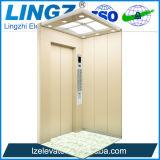 De Lift van de Lift van Lingz voor de WoonLift die van de Lift van de Villa van het Huis Kleine wordt gebruikt