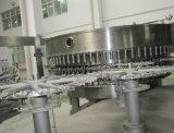 Completare l'acqua minerale pura che elabora l'impianto di imbottigliamento e di trattamento