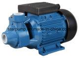 pompe à eau électrique de 0.5HP Pm45 Peripherial